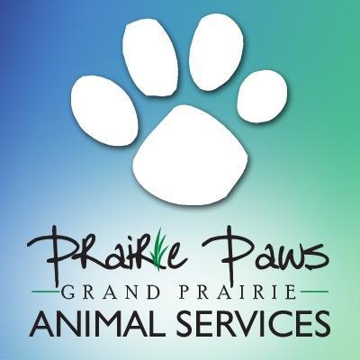 Grand Prairie Paws